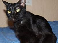 Laverne's story Our beauty Laverne is a black domestic