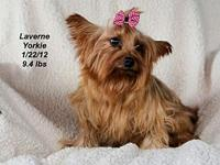 Laverne's story Please contact Constance