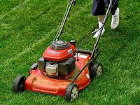 Texas Best Lawn Care & Landscape is a locally owned and