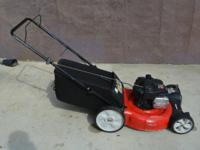 21 in. 140cc OHV Briggs & Stratton Gas Walk-Behind Lawn