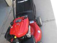 Troy Bilt - self-propelled (no pushing necessary).