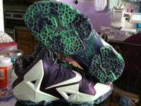 "I have a brand name new pair of Lebron 11 ""Everglade"""
