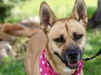 My story Leddy is one active gal! She will enjoy a home