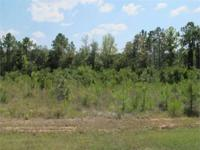 Ten Individual 1 Acre Lots Ava NEW SUBDIVISION located