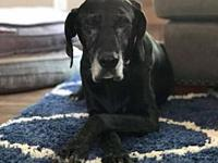 Lenore's story Lenore is a sweet senior lady that has