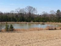 This property consists of 250 acres in Holmes County on