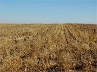 320 Acres of dry land farm ground for sale in Seward
