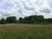16.76 wooded acres between Liberty & Six Mile. Large
