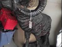 amazing fully one piece wood carving of bighorn sheep,