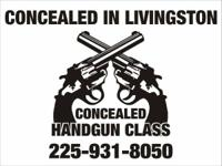 Structured personal Concealed Handgun Class.  1 day