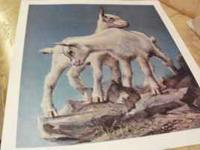 Signed Ben Hampton Print...called Mountain Goats.