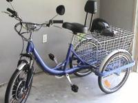 WOW- for sale is this like new CozyTrike LE electrical