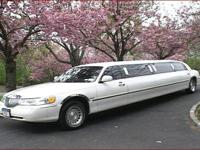 Limousine & Party Bus services (Overland Park ).  Limos