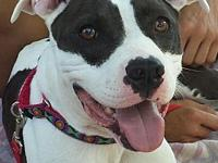 Lindy's story Ms. Lindy is a bundle of love, joy and