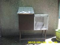 I have a purple litter pan for rabbits or ferrets for