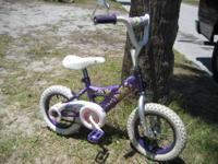 Purple and white bicycle with the Disney Princesses all