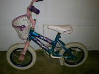 I am selling a Little Girls Bike Charm rallye . I am