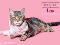 Lovely Liza is a beautiful girl who was abandoned at a