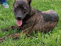 Lizzie's story This lively and dynamic girl is Lizzie,