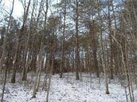 This all wooded 8+/- acres sits in the heart of the