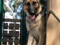 Lola IS AVAILALBE (updated 04-13-2018)   To meet any of