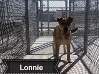 Lonnie's story We have an update on Lonnie. Who has