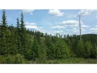 40 acres Recreation/Hunting land with Year Round