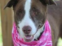 lorie's story Lorie is a super-sweet girl looking for