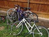 In Canyon - Approximately 15 bikes for sale. All