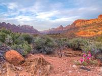 ZION OVERLOOK LOT! This incredible lot in Springdale