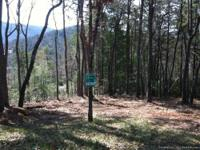 Three adjacent wooded lots with total area of 1 acre,