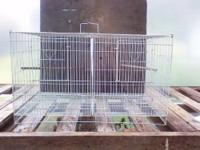 Downsizing all bird cages. Most used for small birds,