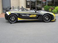 Black with Yellow & Gray Lotus Sport decals & black