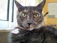 Louise's story Louise is a large affectionate and