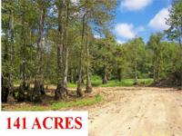140.5 ACRE TIMBER & & RECREATIONAL TRACT WITH LARGE