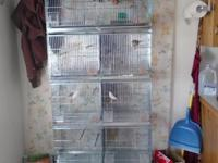 Stackable cages and Birds. Passion birds, canaries and