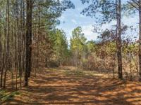 Over 9 acres of wooded property perfect for your