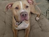 Luca's story *** COURTESY LISTING *** PLEASE CALL OR