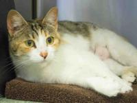 Lucy is truly beautiful! She's loving, affectionate,
