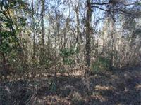10.5 acre wooded tract with a clear spot halfway down