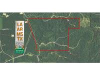 440 Acre Pine and Hardwood timberland for sale in