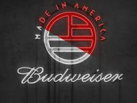 I HAVE ALL ACCESS PASSES TO THIS YEARS 2014 BUDWEISER
