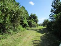 IN THE NICK OF TIME FOR HUNTING SEASON! 1,265 ACRES OF