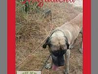 Magdalena's story Look at our big senior girl,