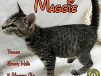 Maggie's story You can fill out an adoption application