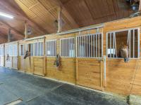 This magnificent equestrian estate is a mile from two