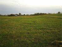 1 +/- acre lot with county water and electrical readily