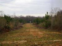 Priced under $2,150 per acre, this hunting and timber