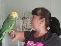 I'm selling my bird. He's 23 years old. I've been