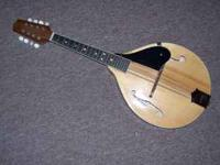 Johnson Mandolin model MA-120N solid carved top, solid